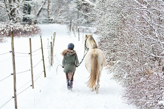 Impressionen Pferdefotografie