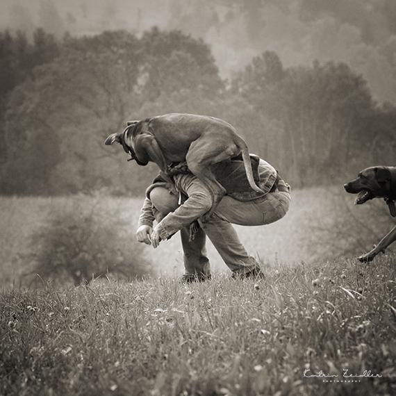 Hundefotografie - Impressionen Spiel mit dem Hund