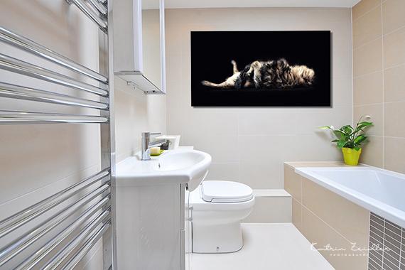 Tierfotografie auf Alu Dibond Badezimmer