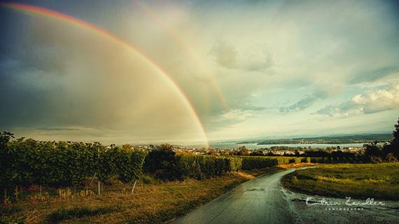 Landschaftsfotografie Bodensee Regenbogen
