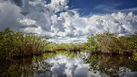 Landschaftsfotografie Florida Everglades