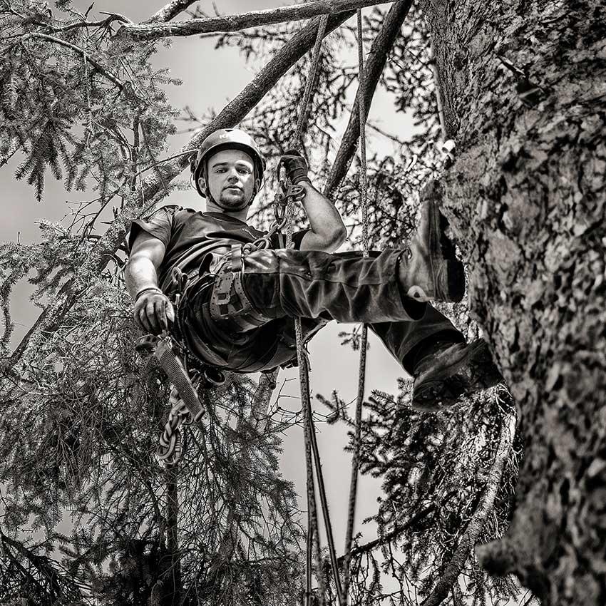 Baumpfleger Kevin Hiller