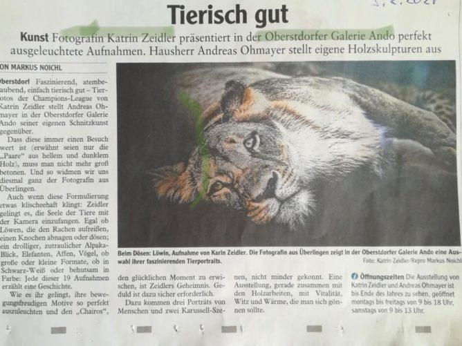 Beitrag Allgäuer Zeitung - tierisch gut